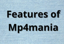 Features of Mp4mania (1)