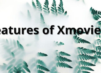 Features of Xmovies8