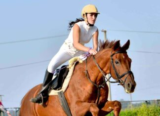 horse riding (1) (1) (1) (1)